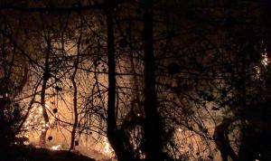 تجدد الحريق في كفرحبو.. ومناشدات للمساعدة