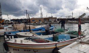 صيادو الأسماك في صيدا: للسماح للصيادين ببيع غلتهم