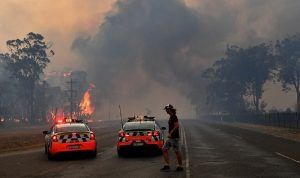 بسبب الحرائق.. أستراليا تقرر إعدام 10 آلاف جمل