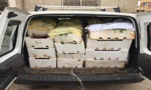 توقيف شاحنة محملة بالبندورة السورية المهربة