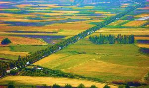 الهيئات والنقابات الزراعية بقاعا: لحكومة كفوءة توحي بالثقة