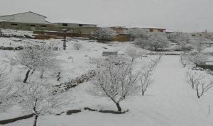 الثلوج على ارتفاع 1200م في راشيا والبقاع الغربي