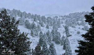 حرارة 10 تحت الصفر وثلوج على ارتفاع 200 متر