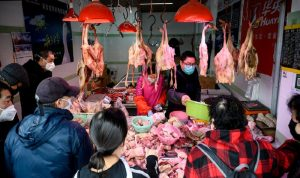 نواب أميركيون للصين: أغلقوا أسواق الحيوانات البرية