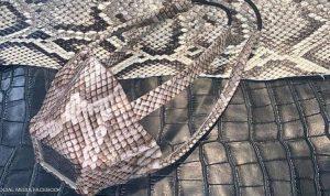 شركة تثير الجدل بصناعة كمامات من جلود الثعابين