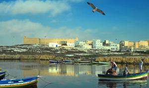 تمديد حالة الطوارئ في تونس 6 أشهر