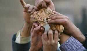 المحروقات والخبز.. للميسور بالدولار وللفقير بقسائم