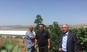 هاشم: لخطة زراعية تخرجنا من الاقتصاد الريعي