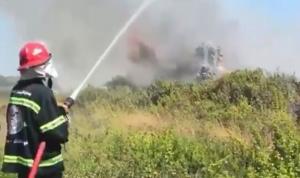 حريق كبير في محمية صور