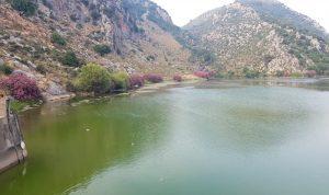 بالصورة: تحول مياه بحيرة عيون السمك الى اللون الأخضر!
