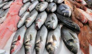 """""""الصحّة"""" تحذّر: لا تستهلكوا أسماكًا غير معروفة المصدر!"""