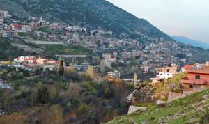 بلدية مشغرة: إصابة جديدة بكورونا في البلدة