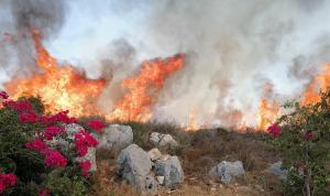 إليكم خريطة لتوقعات خطر الحرائق في اليومين المقبلين