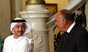 وزير الخارجية الإماراتي عرض ونظيره المصري الوضع في شرق المتوسط