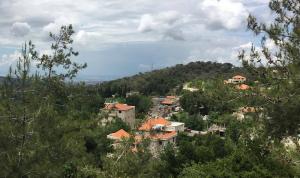 إصابة عائلة بكورونا في بلدة عين يعقوب