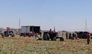 بوابات التهريب مفتوحة… دعم بذار البطاطا لكمية ثلاثة أضعاف حاجة لبنان
