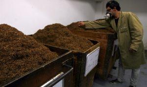 مزارعو التبغ: زيادة الأسعار قبل تسليم المحاصيل