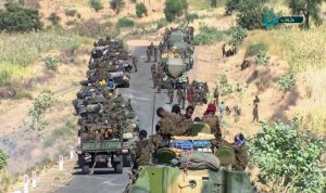 الحكومية الإثيوبية: نرفض التدخل الخارجي في تيغراي