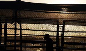 واشنطن تعتقل ألف طفل مهاجر على طول الحدود مع المكسيك