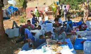 الأمم المتحدة: الأزمة الإنسانية في تيغراي تزداد تأزما