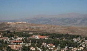 قوة إسرائيلية دخلت البوابة الفاصلة عند الوزاني وسرقت 7 أبقار