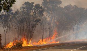حريق بخراج الغجر والدفاع المدني يواجه صعوبة في إخماده