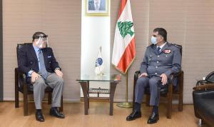 عثمان عرض الأوضاع مع سفيري مصر وألمانيا