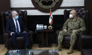 قائد الجيش عرض مع فهمي الأوضاع الأمنية