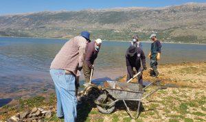 فرق الليطاني ترفع الاسماك النافقة عن ضفاف بحيرة القرعون