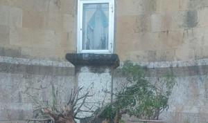 إحباط سرقة مزار في منطقة المرفأ