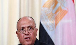 شكري: هناك دعم عربي لموقف مصر بقضية سد النهضة