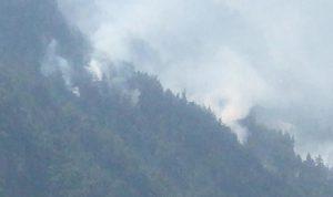 تمدد الحرائق في بلدة حرار ومناشدة من الاهالي