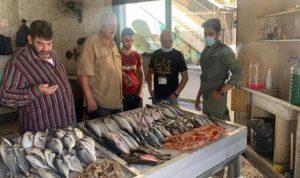 """""""كبسة"""" على مسامك ومطاعم السمك في الميناء… وهذا ما تبيّن"""
