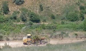 اجتياز عناصر اسرائيلية السياج مقابل متنزهات الوزاني