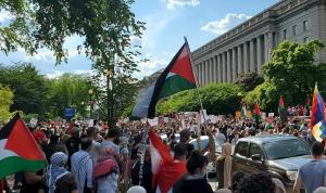 تظاهرات في أميركا الشمالية تضامناً مع فلسطين (فيديو)