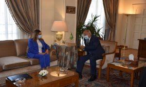 أبو الغيط: للإسراع في تشكيل حكومة لبنانية جديدة