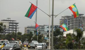 إريتريا تتهم واشنطن بإشعال الحرب في تيغراي