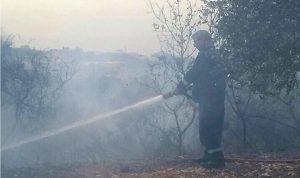 إخماد حريق في أحراج الغسانية