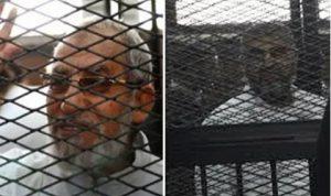 حكم نهائي بالمؤبد لقادة الإخوان