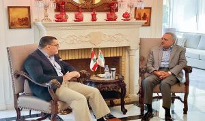 الأوضاع العامة بين ارسلان والسفير المصري