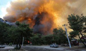 جورجيا: مستعدون لمساعدة تركيا في مكافحة الحرائق