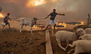 تركيا: السيطرة على الحرائق باستثناء موقعين