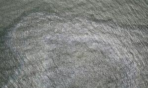 """إعصار """"إيدا""""… اكتشاف تسرب نفطي في خليج المكسيك"""