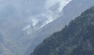 حريق في أحراج وادي عمير… ومناشدة من الأهالي