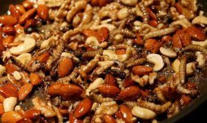 شركة إسرائيلية تبدأ بإنتاج حلوى الحشرات