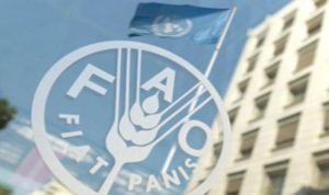 «فاو» تشدد على أهمية الشراكات في التصدي لتحديات التغذية