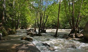 سدّ جنة – نهر ابراهيم: بين السدود السياسية وسوء النية (ناهلة سلامة)