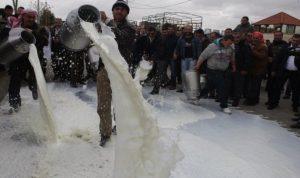 """أزمة الحليب مستمرة… والمزارعون يشكون غياب """"الزراعة"""""""