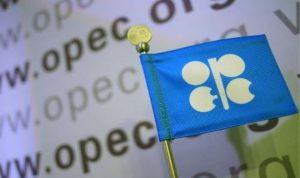 مسح:انهيار توقعات أسعار النفط بعد إبقاء أوبك على إنتاجها دون تغيير