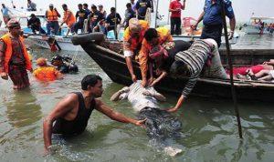 مقتل 12 شخصا في حادث غرق في بحر ايجيه